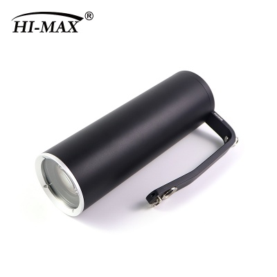 HM-F910 field survey light source (white light)