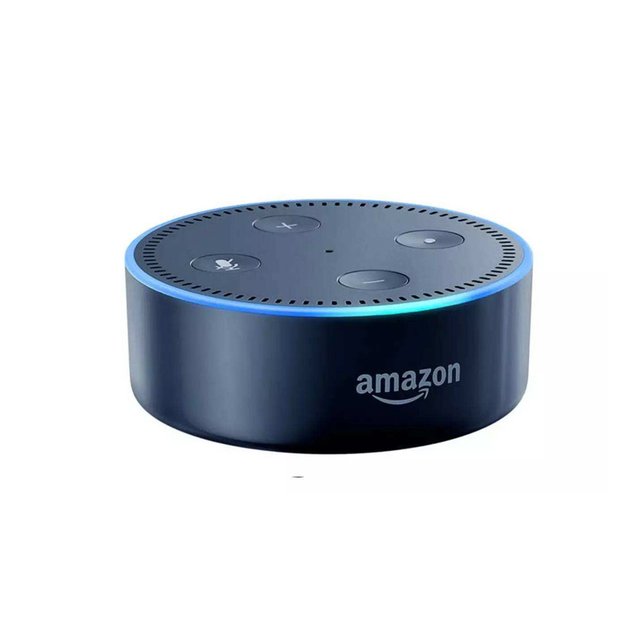 How to connect smartlife with amazon echo in iPad