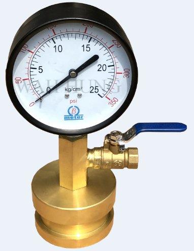 WH038-D 静压磅表(死磅)