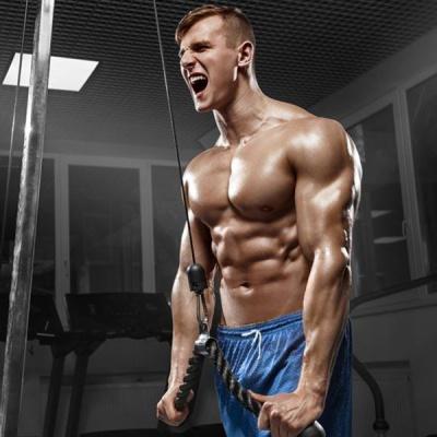 肌肉加强课程
