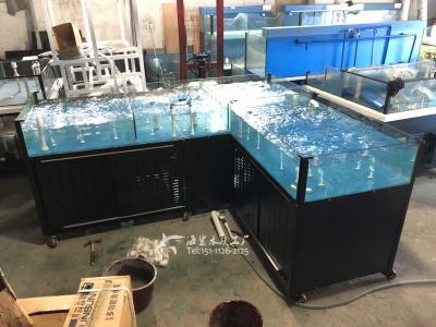 湘潭生鲜店海鲜水产鱼池缸组 海鲨水族工厂专业定做