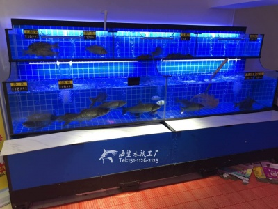 邵阳饭店商用海鲜鱼池鱼缸 海鲨水族工厂免费设计 专业制作
