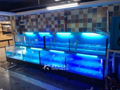 益阳连锁超市海鲜鱼池专业定做 ***海鲨水族工厂