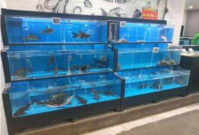 永州大型超市海鲜鱼池水产缸 ***海鲨水族工厂