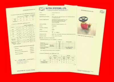Hong Kong Nutek System Institute Hydrant Valve Test