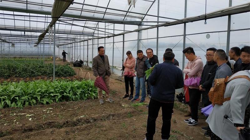 民间探索有机农业新模式 助力乡村振兴