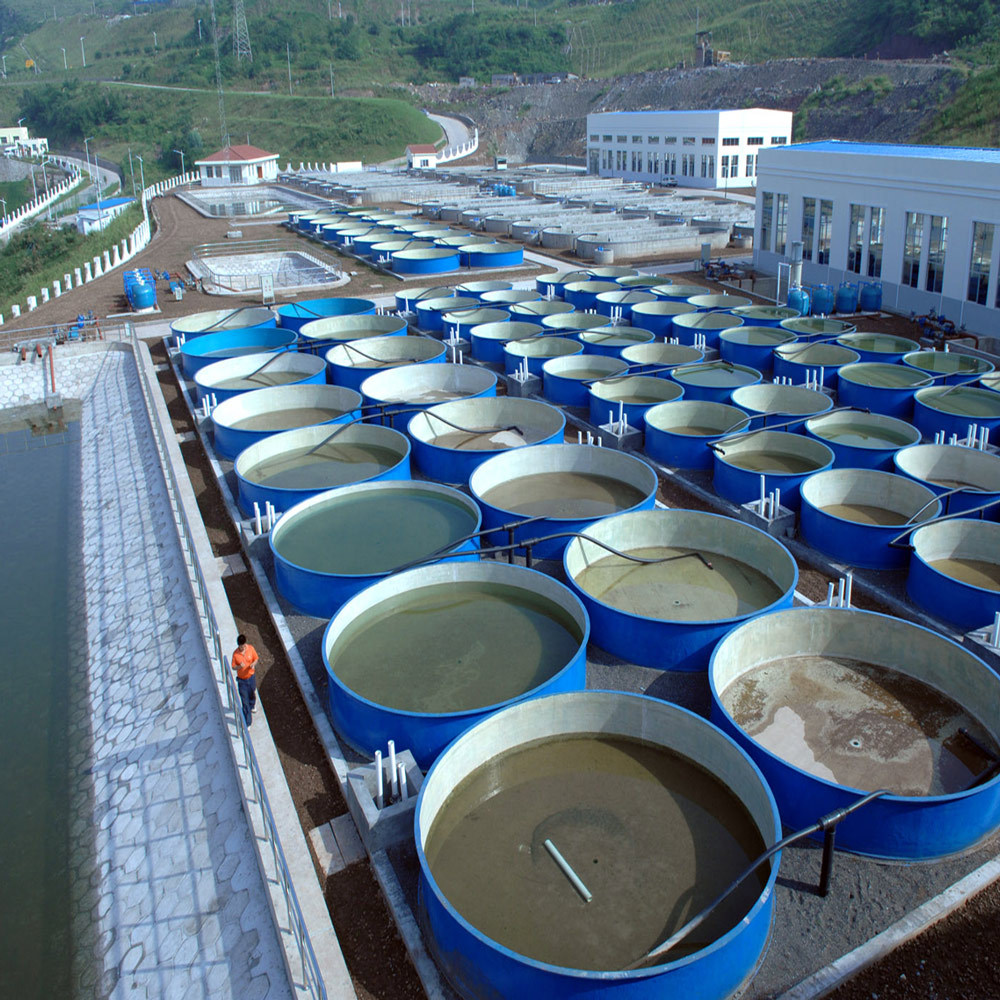 水电站增殖放流项目