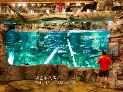 嵌入式观赏鱼缸