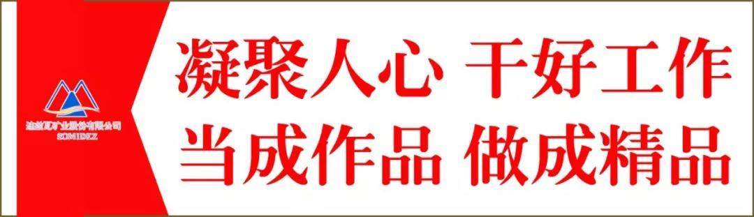 2019全年免费料大全_迪兹瓦矿业座谈会让员工释放情感缓...