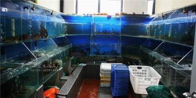 娄底水产市场海鲜池