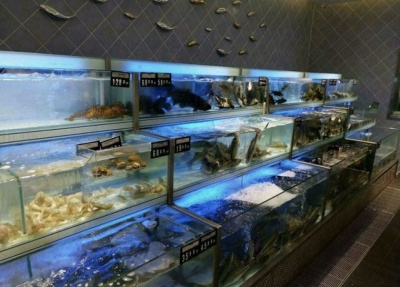 超市饭店酒店海鲜鱼池 海鲨水族工厂定做