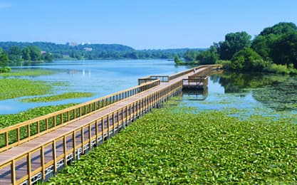 floating bridge, waterfront landscape