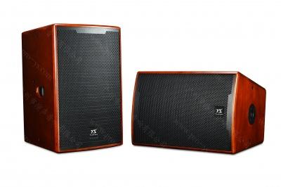 KT12专业音箱