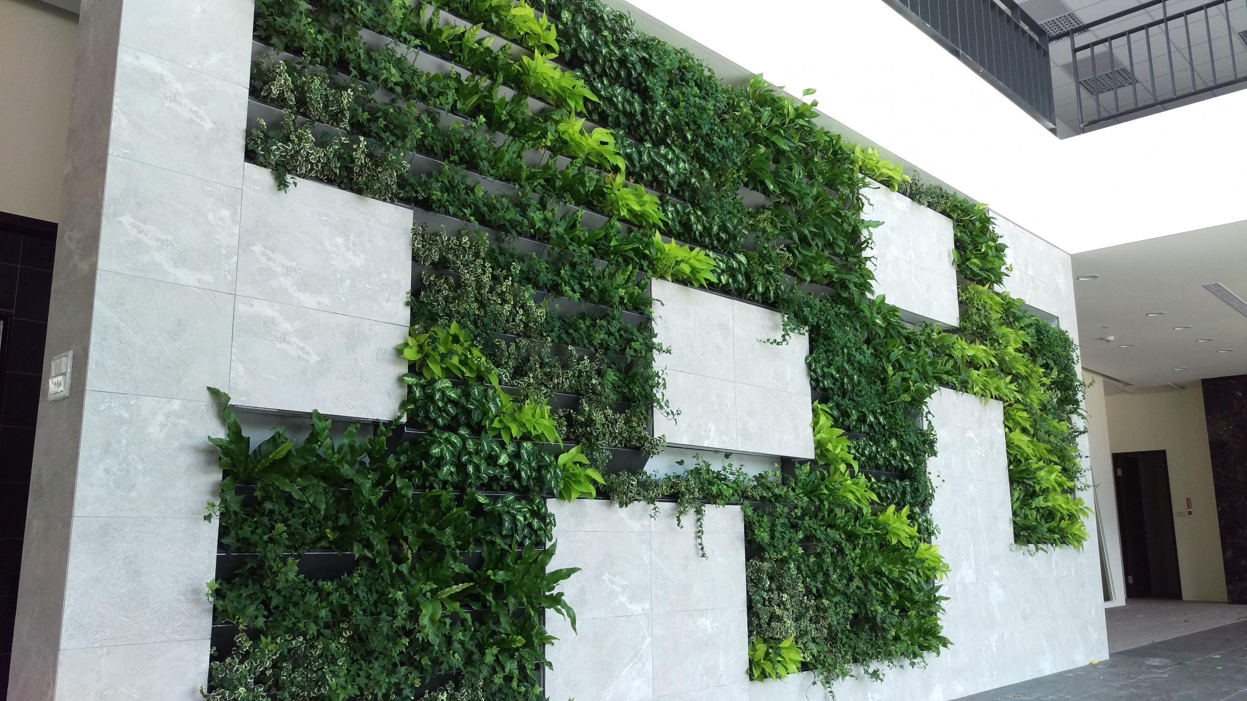 把森林搬回家,纯天然的空气净化器——室内植物墙