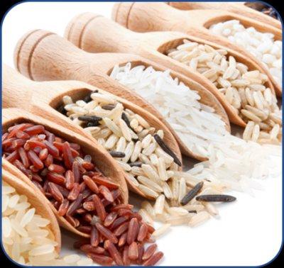 粮食类及制品检测