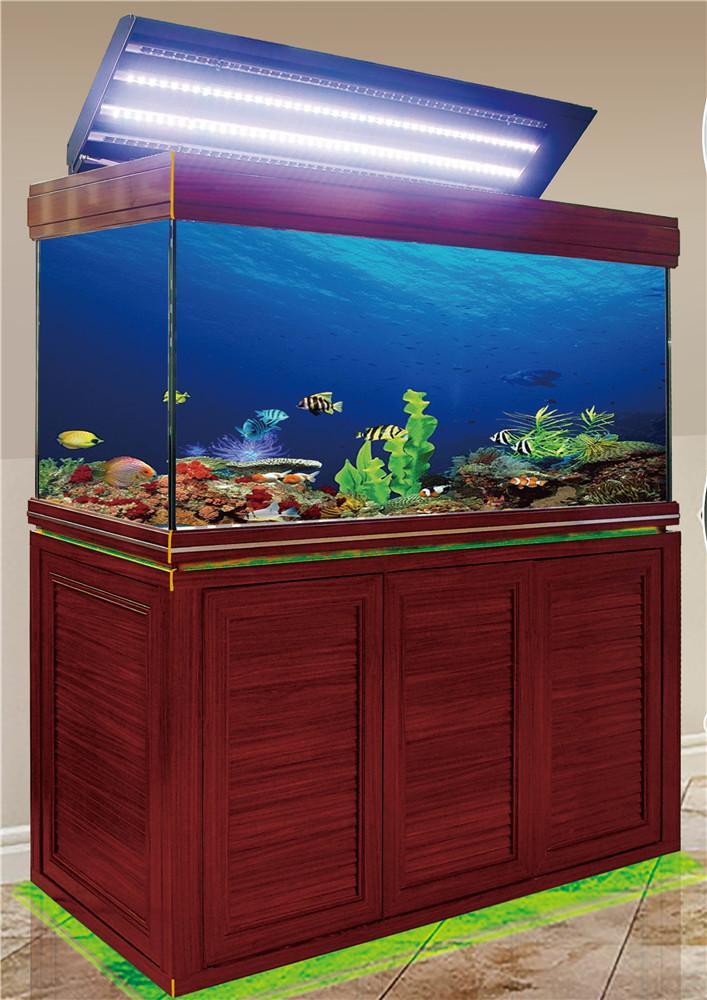 超亚灯带款鱼缸