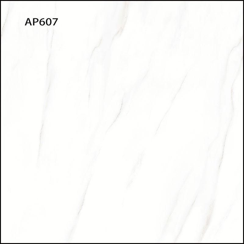 AP607