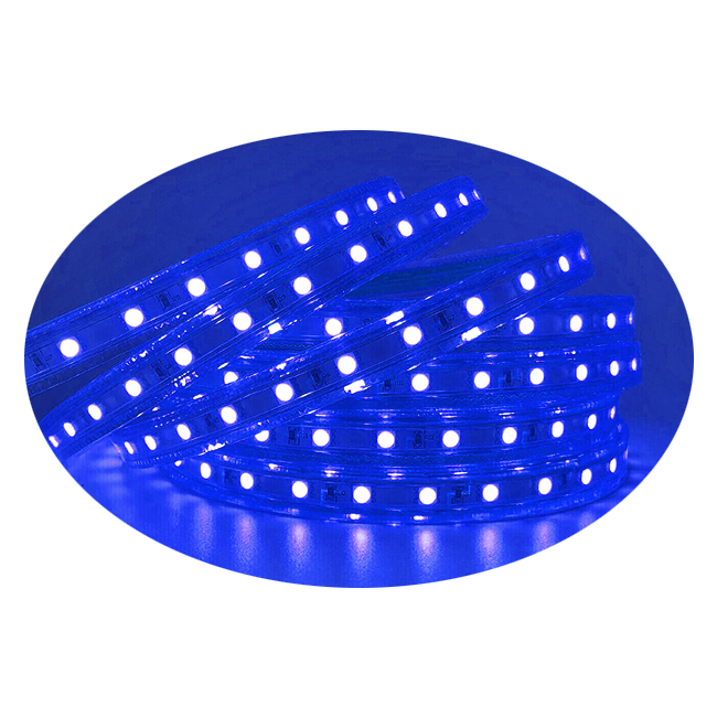 Blue, Dimmable, 110-120V Flat LED Strip