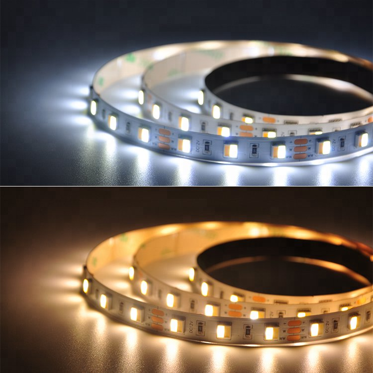 CCT Adjustable 60Leds/M 2in1 5050 Led strip light
