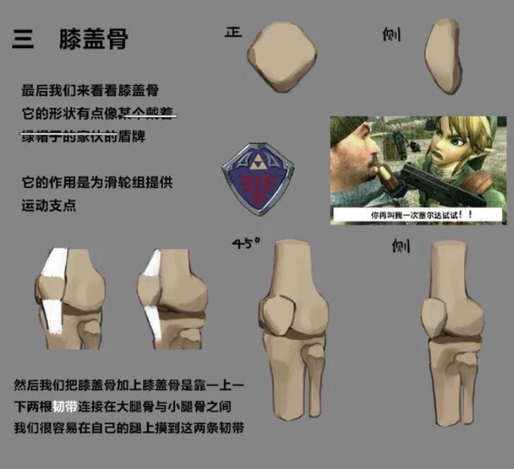 [CG经验] 人体的膝盖应该怎么画