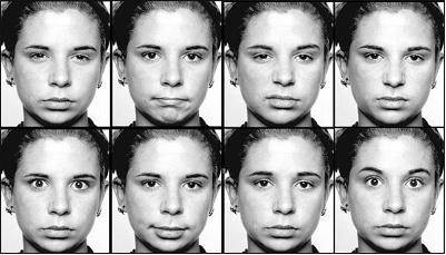 原画如何画表情,学习下心理学的微表情研究...
