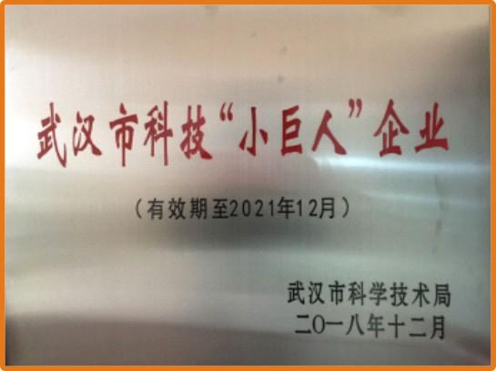"""武汉市科技""""小巨人""""企业"""