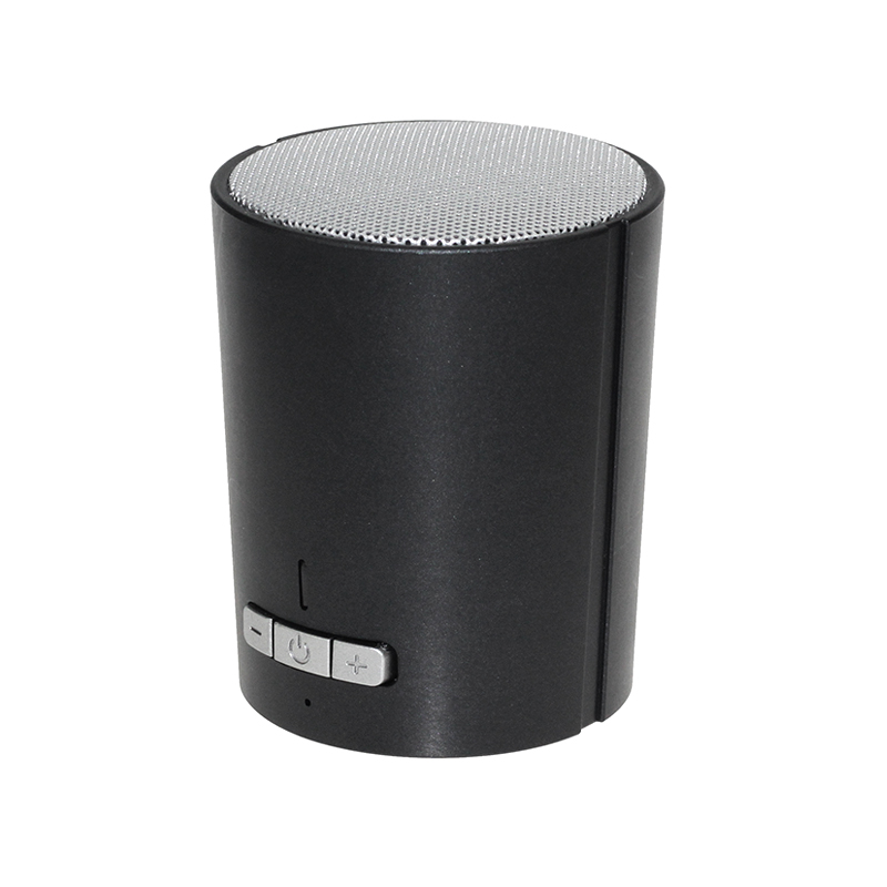 Portable bluetooth speaker BT-320