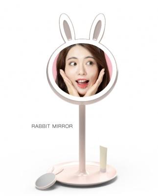 LED补光带灯台式收纳化妆镜可爱公主梳妆镜(附带10倍放大小镜子)