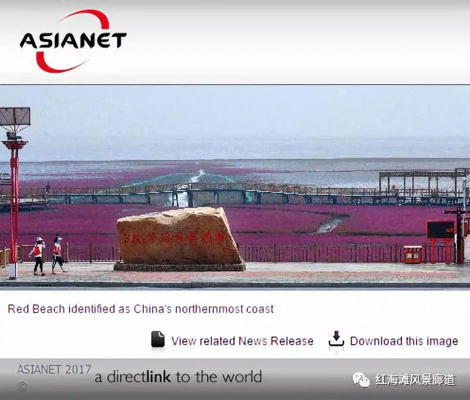 红海滩国家风景廊道再次聚焦全球目光