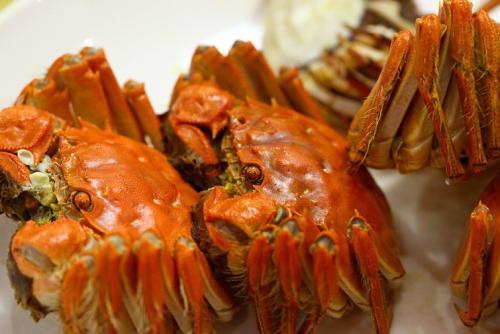 盘锦河蟹与南方河蟹的区别有哪些?