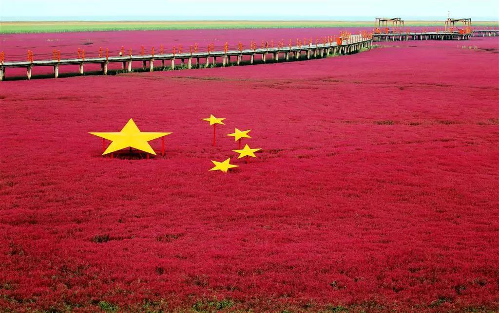 丰收中国 幸福盘锦:红旗飘飘