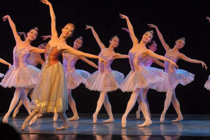 芭蕾舞学习培训班 - 珠海魅力人生