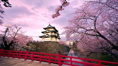 日语培训报名 - 珠海若亚语言培训中心